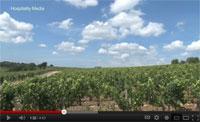 Bordeaux Revisited Episode 2