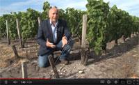 Bordeaux Revisited Episode 1